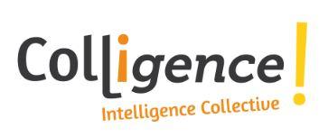 Logo-Colligence-Gris